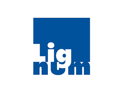 Lignum_4fbg_blau